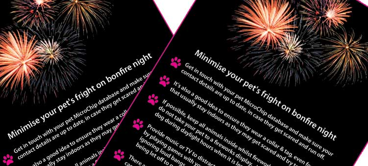 Bonfire / Fireworks Advice Posters