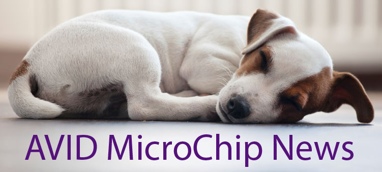 Pet MicroChip Registration Improvements